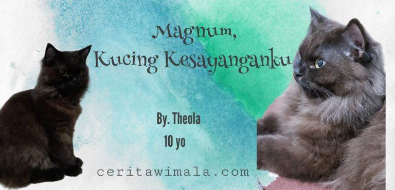 Magnum, Kucing Kesayanganku
